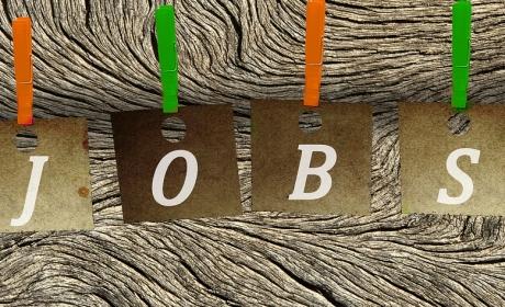 Nabídka stáží a pracovních příležitostí